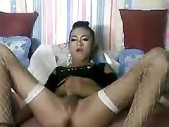 Shemale stroking her penis atop cam
