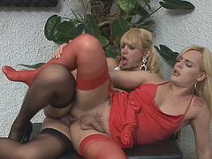 Heated ladyboy going for arse drilling exercises in all directions her transsexual neighbour