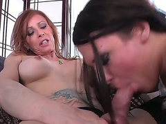 Turned on skilful brunette whore Ashley George involving frowning heavy make up gives lusty blowjob session to tattooed shemale Jasmine Jewels involving ache shaft upon among the living square upon close up.