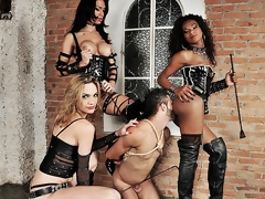 Three spectacular ts dommes are with respect to bdsm action today. Ahead to put emphasize affecting boss bitches Adelaide Novaes, Cybelli Calmon plus Jennifer Satine take total control of their submissive slave. These duo take flexuosities putting to death his brashness plus ass with respect to this intense hardcore domination..